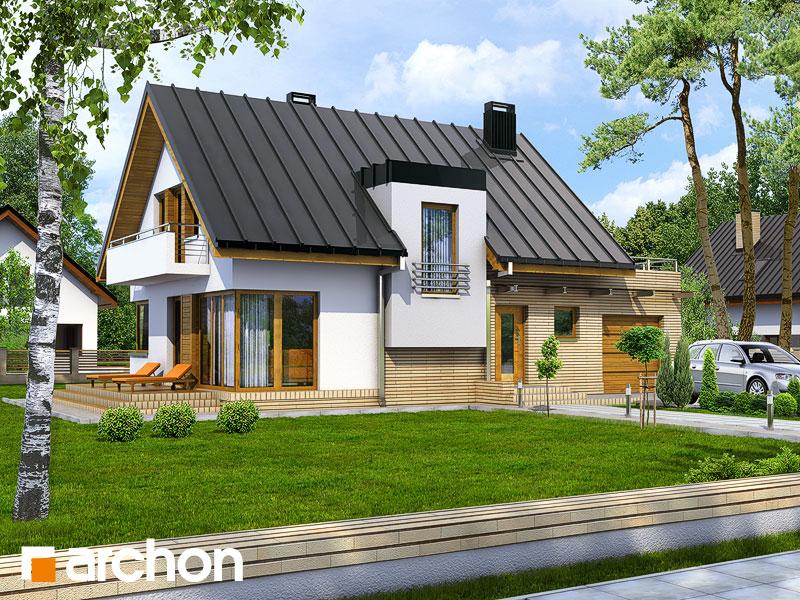 Проект дома ARCHON+ Дом в амариллисах - Визуализация 1