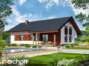 Проект дома ARCHON+ Дом в палисандрах