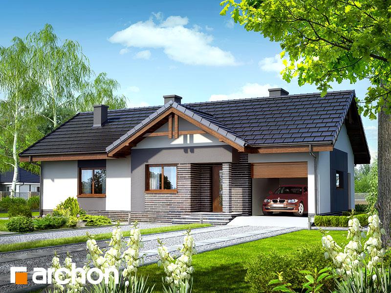 Проект дома ARCHON+ Дом в неринах - Визуализация 1