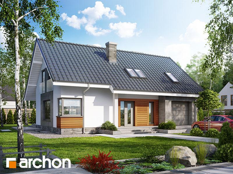 Дом в гейджее (П) - Визуализация 1