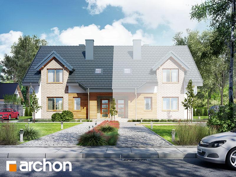 Проект дома ARCHON+ Дом в малине (A) - Визуализация 1