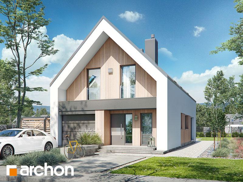 Проект дома ARCHON+ Дом в папаверах - Визуализация 2