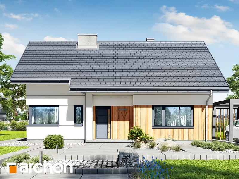 Проект дома ARCHON+ Дом под липкой 2 - Визуализация 1